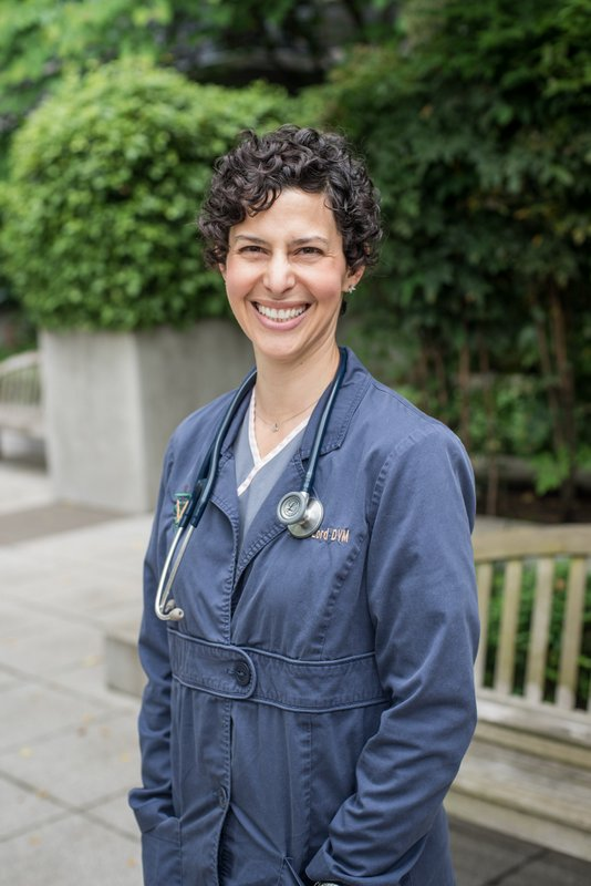 Meet Dr. Alison Lord - associate veterinarian